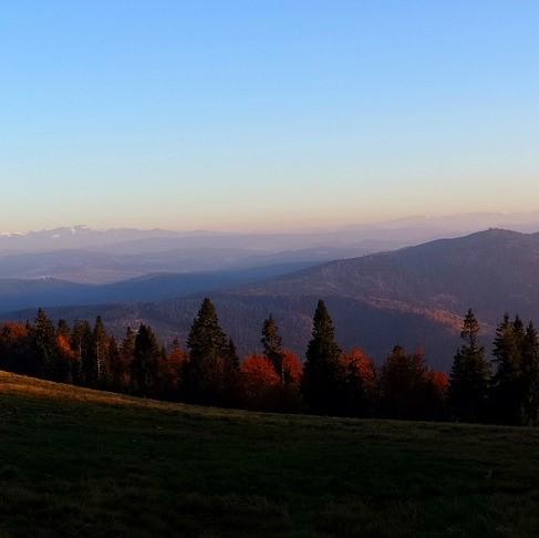 https://www.hladinaalfa.cz/wp-content/uploads/2020/04/Beskydy-hory-1-1.jpg